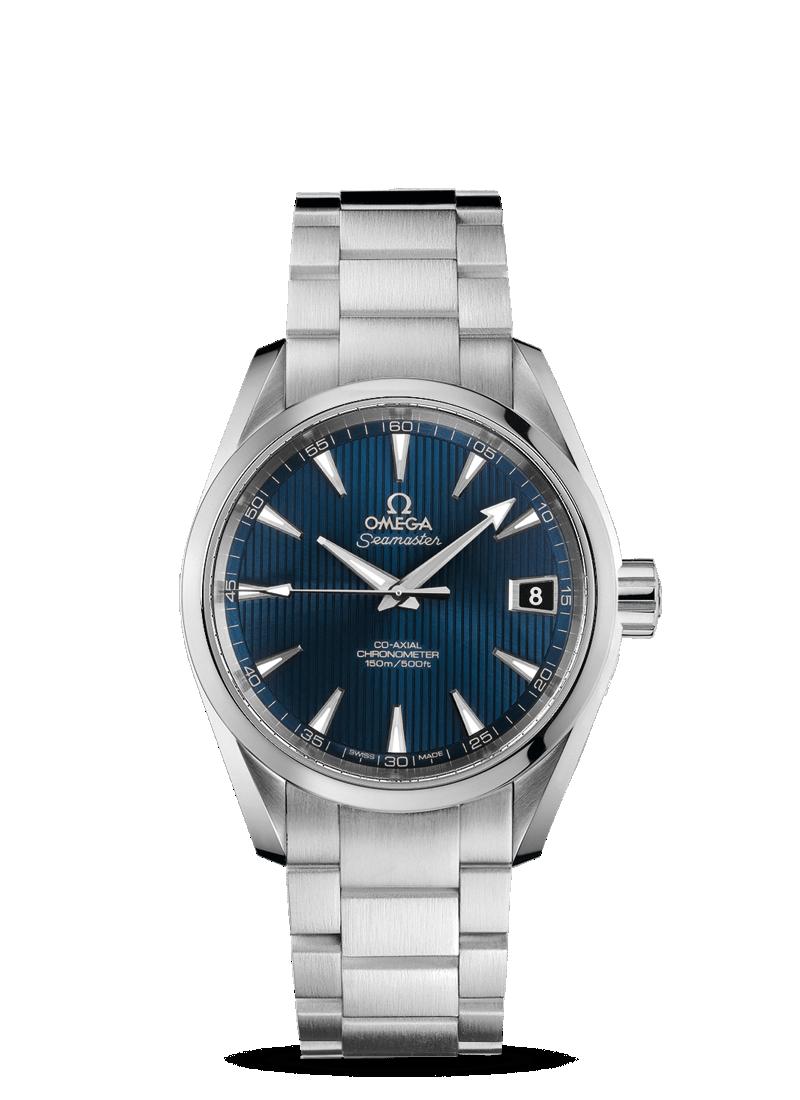 Omega Aqua Terra 231.10.39.21.03.001